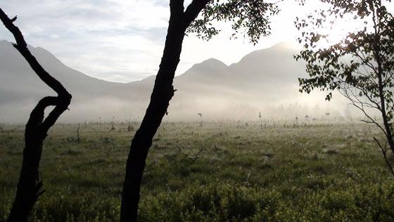 戦場ヶ原の朝