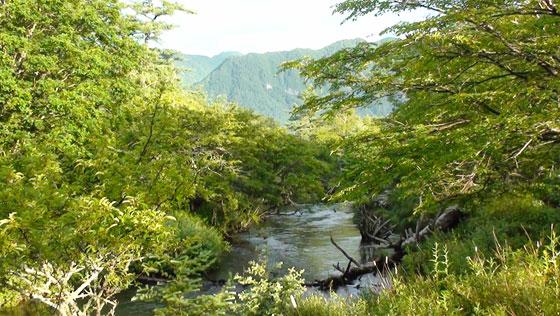 日光の山と湯川