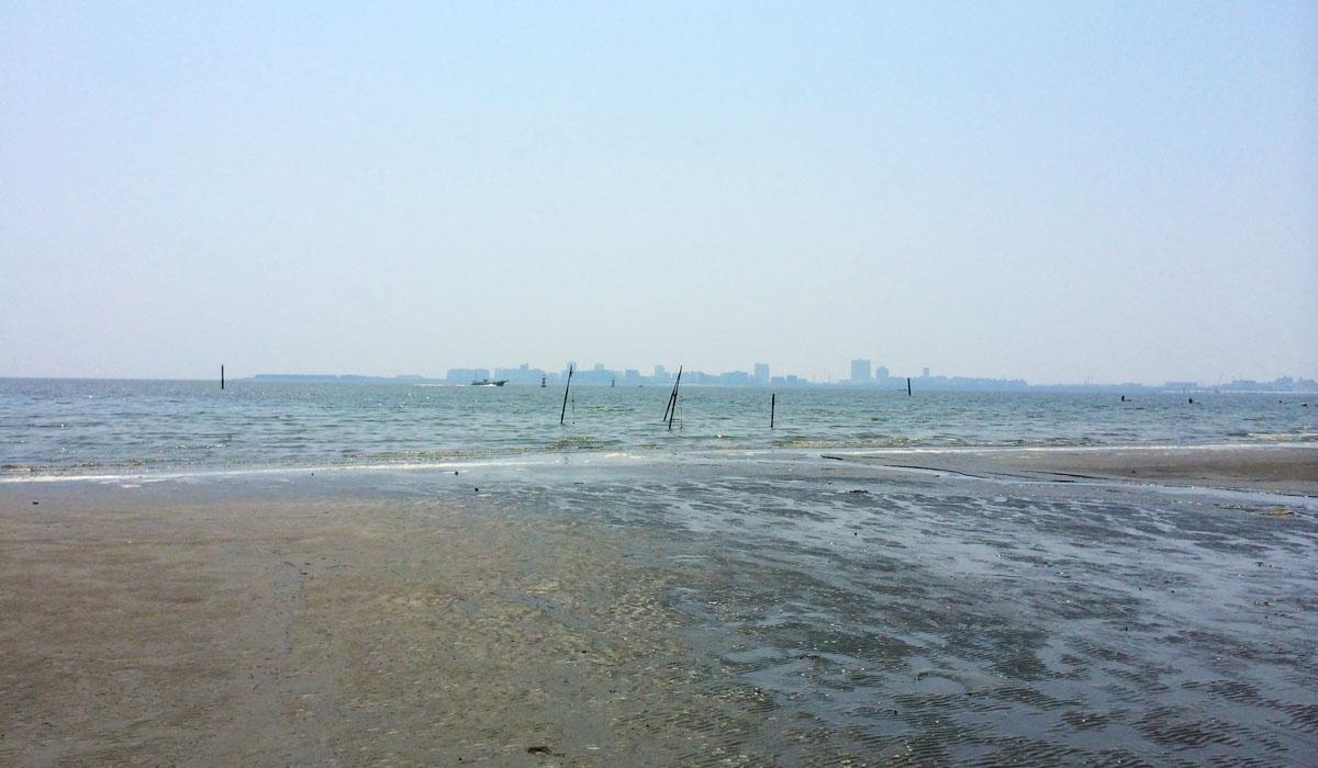 干潮の東京湾