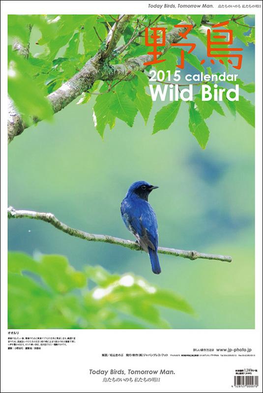 2015年 野鳥カレンダー