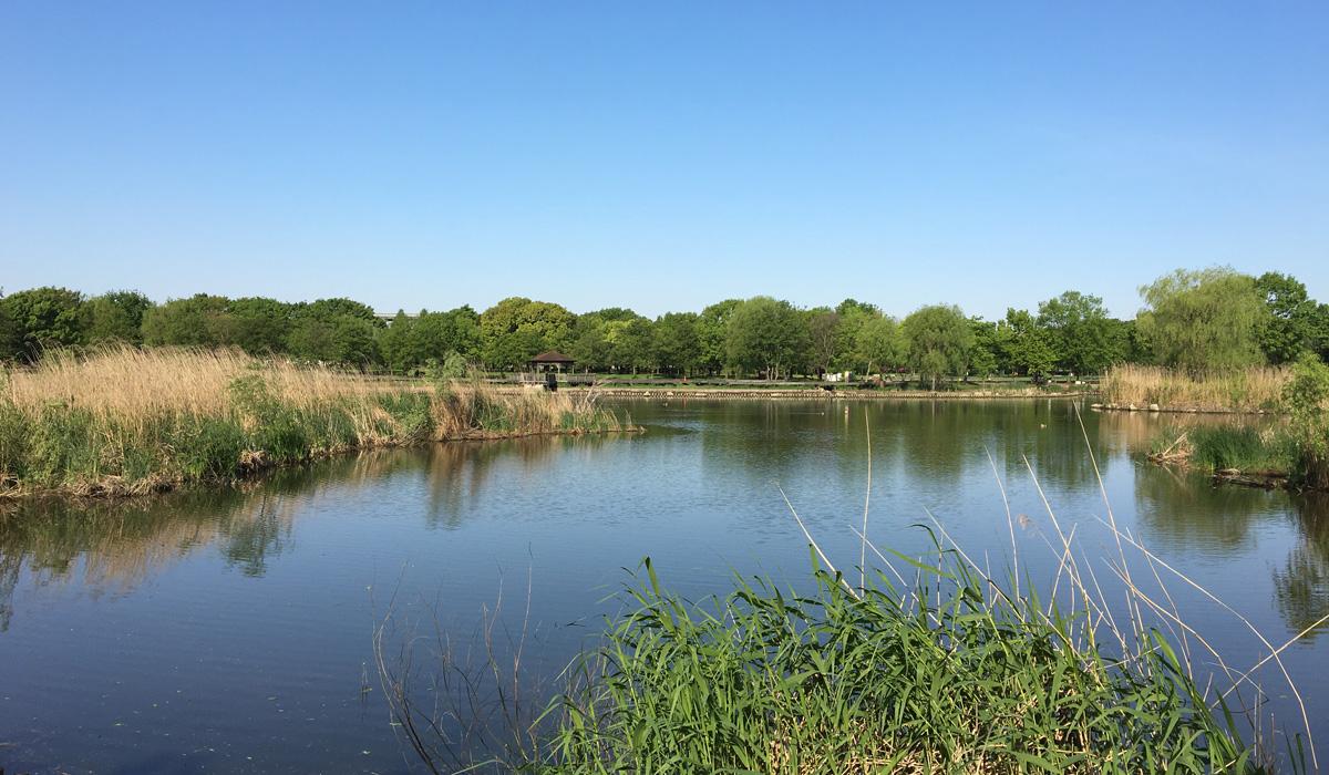 晴天の公園