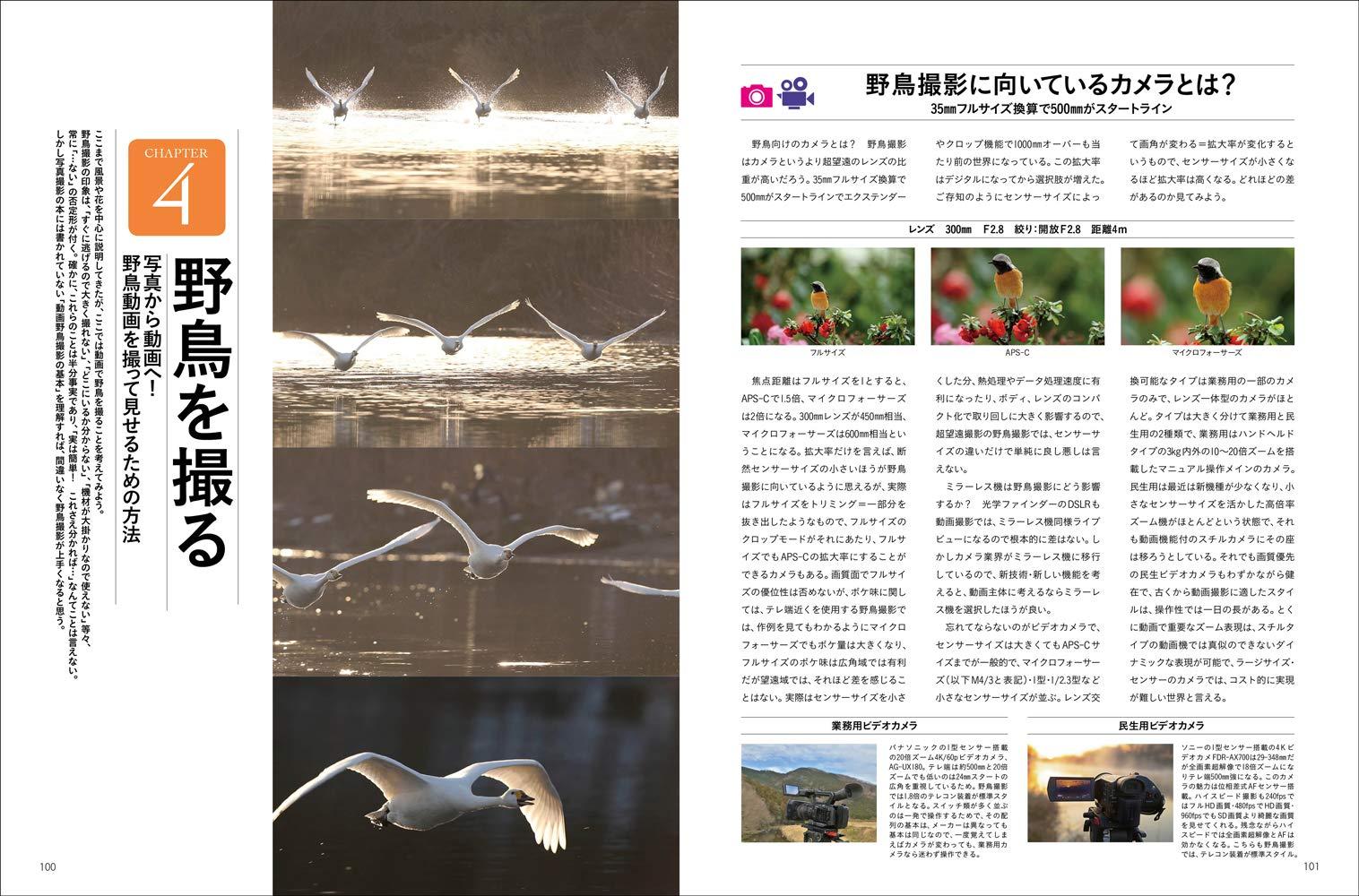 """""""野鳥撮影・プロのテクニック"""""""
