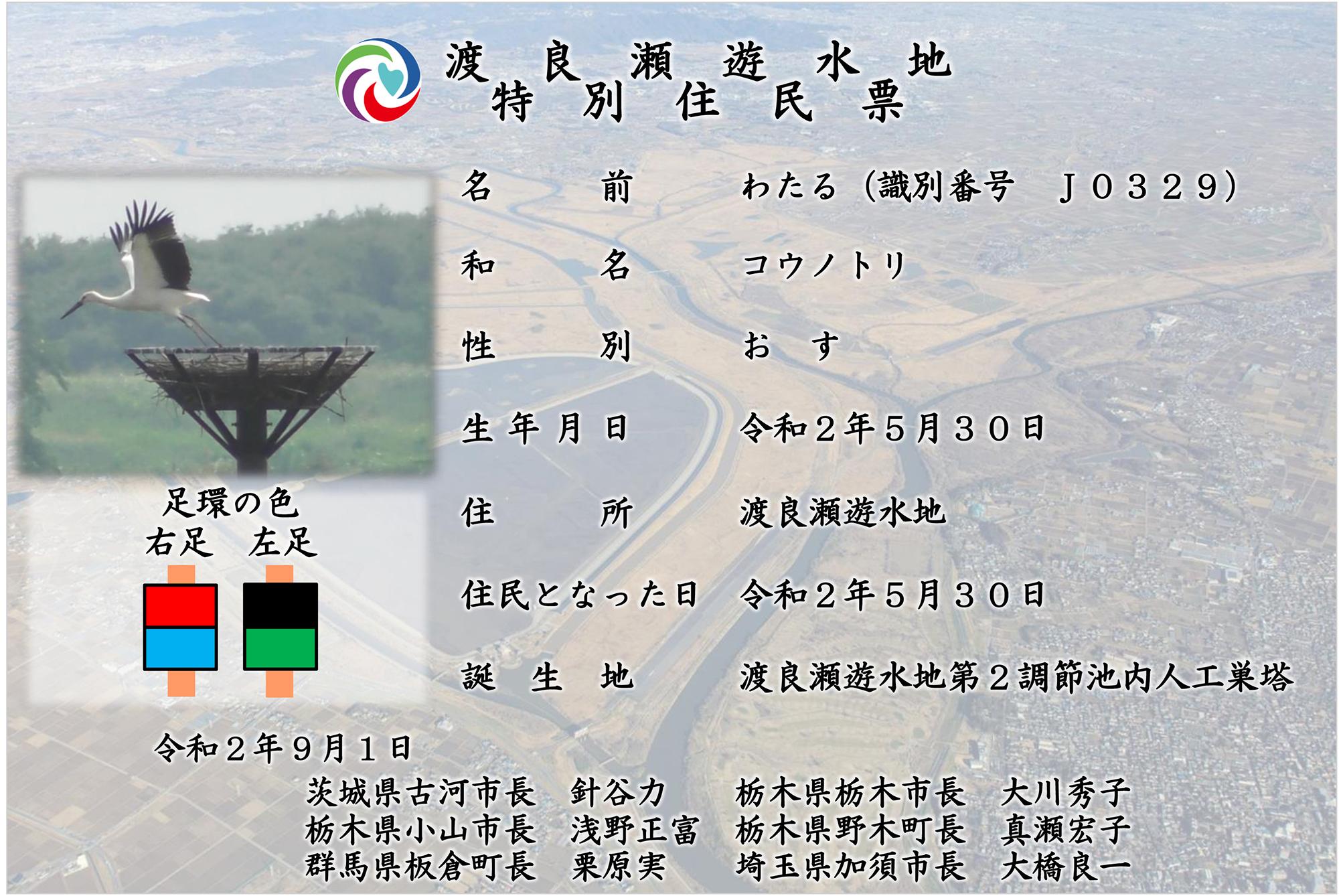 """""""コウノトリ・わたる君の住民票"""""""