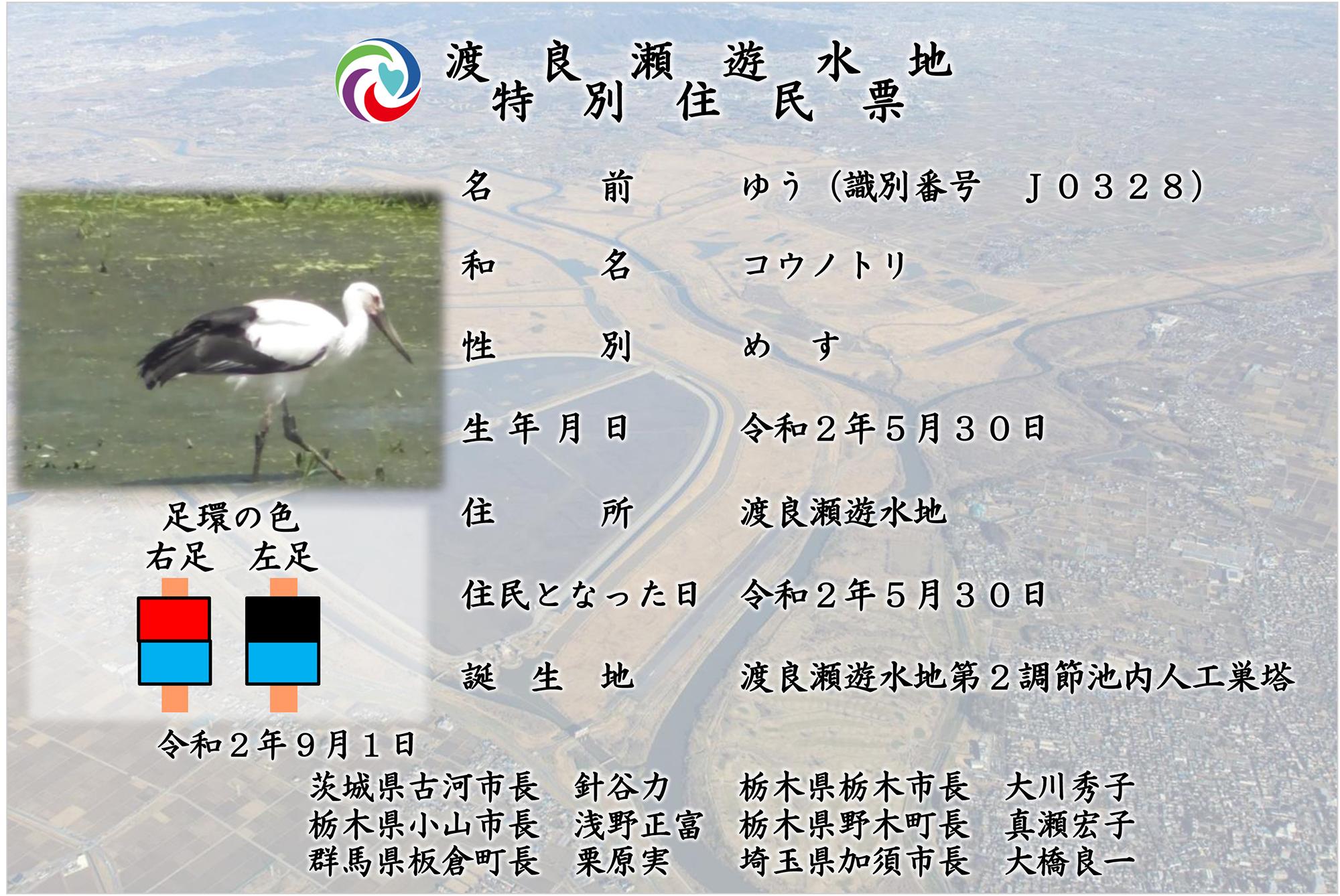 """""""コウノトリ・ゆうちゃんの住民票"""""""