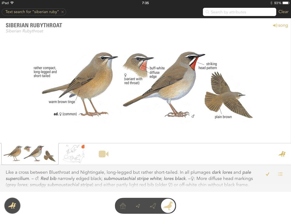 野鳥図鑑アプリ