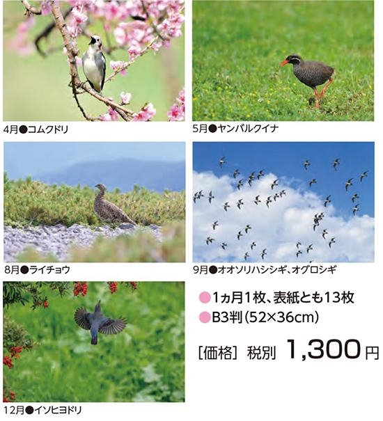 """""""2021年野鳥かレンダー"""""""
